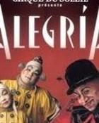 alegria wallpaper 1