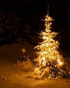 The Glow of Christmas wallpaper 1