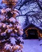 Covered Bridge Christmas