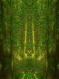 Free Forest Of Lost Souls.jpg phone wallpaper by ram2000