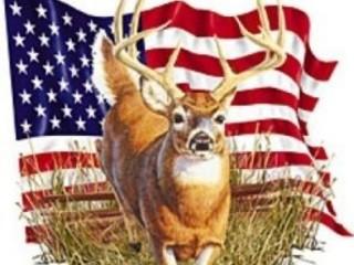 Free buck pic.jpg phone wallpaper by cummins3500