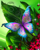 Butterfly love.jpg wallpaper 1