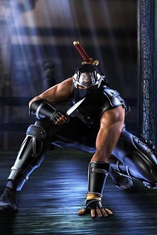 Free Ninja Gaiden.jpg phone wallpaper by snyderman1