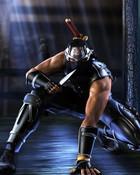 Ninja Gaiden.jpg wallpaper 1