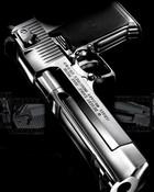 Pistol -2.jpg