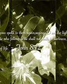 John 812.jpg