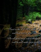 Proverbs-3-5-6-Bible-Verse.jpg wallpaper 1
