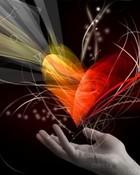 heart seed.jpg wallpaper 1