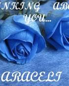 Blue_Roses.jpg