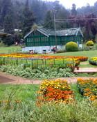 Botanical-Gardens-Ooty