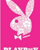 5876-4906-playboy-bunny2.jpg