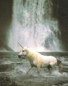 unicorn phone.jpg wallpaper 1