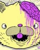 BrainlessKitty Cat