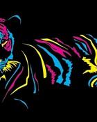 tiger-10-colorful-stripes.jpg