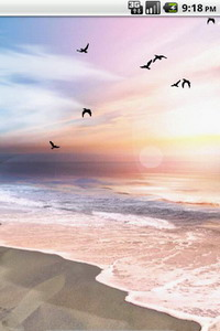 Free Footprints-in-the-Sand-Live-Wallpaper.jpg phone wallpaper by redd0313