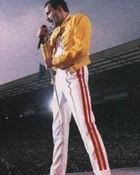 Freddie Mercury wallpaper 1
