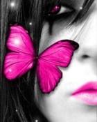 butterfly_pink_.jpg