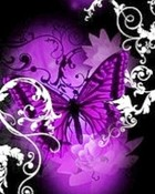 Purple butterfly_.jpg wallpaper 1