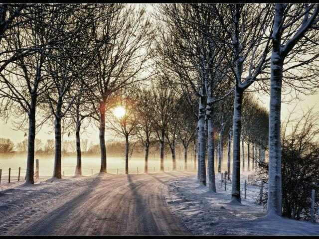 Free Snowy Trail phone wallpaper by bwigley84