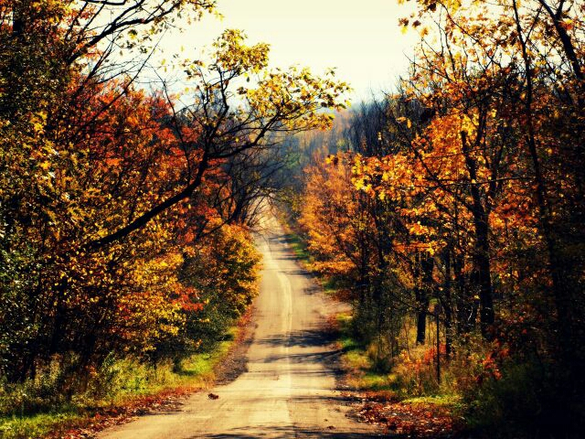 Free Ole dirt road phone wallpaper by bwigley84