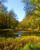 Pretty pond2