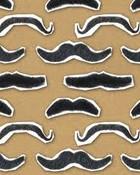 mustache collage.jpg