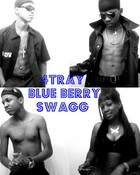 4Tray (BlueBerry Swagg)