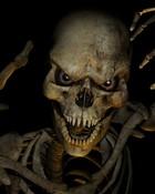 askeleton.jpg