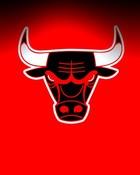 Chicago Bulls Black WP8.jpg