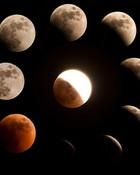 moon_phases.jpg wallpaper 1