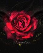 Damned Rose wallpaper 1
