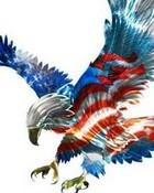 eagle wallpaper 1