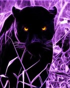 panther in purple grass wallpaper 1