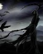 darkest night wallpaper 1