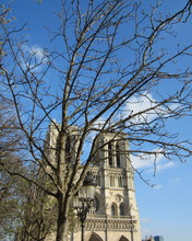 Free Notre Dame in Spring phone wallpaper by livvyz