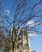 Notre Dame in Spring wallpaper 1