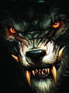 Free Wolf.jpg phone wallpaper by twifranny