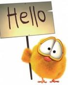 hello1-wal_.jpg