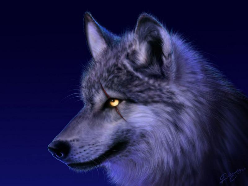 Free Epic Wolf phone wallpaper by eddie24601