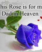 Dad in Heaven.jpg