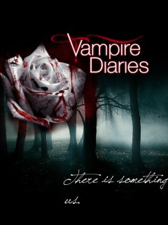 Free vampire diaries-rose.jpg phone wallpaper by twifranny