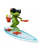surfin liz.jpg