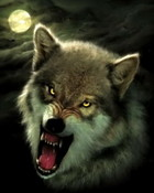 nightbreed-wolf-art.jpg