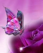 Purple Butterfly wallpaper 1