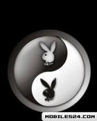 Peace Playboy.jpg