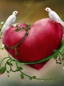 Free love birds phone wallpaper by debbiemknouse
