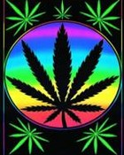 hippi weed.jpg