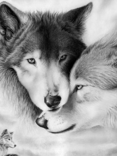 Free love-wolves.jpg phone wallpaper by twifranny