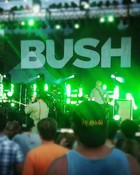 Bush Live at Common Ground