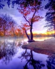 Free Fall sunset phone wallpaper by westvirginiagirl